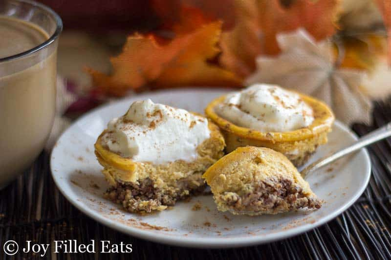 Pecan Crusted Pumpkin Breakfast Cheesecake - Low Carb, Sugar & Grain Free, THM S