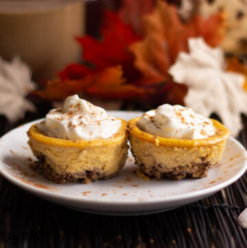 two Pecan Crusted Pumpkin Breakfast Cheesecakes topped with whipped cream on a white plate