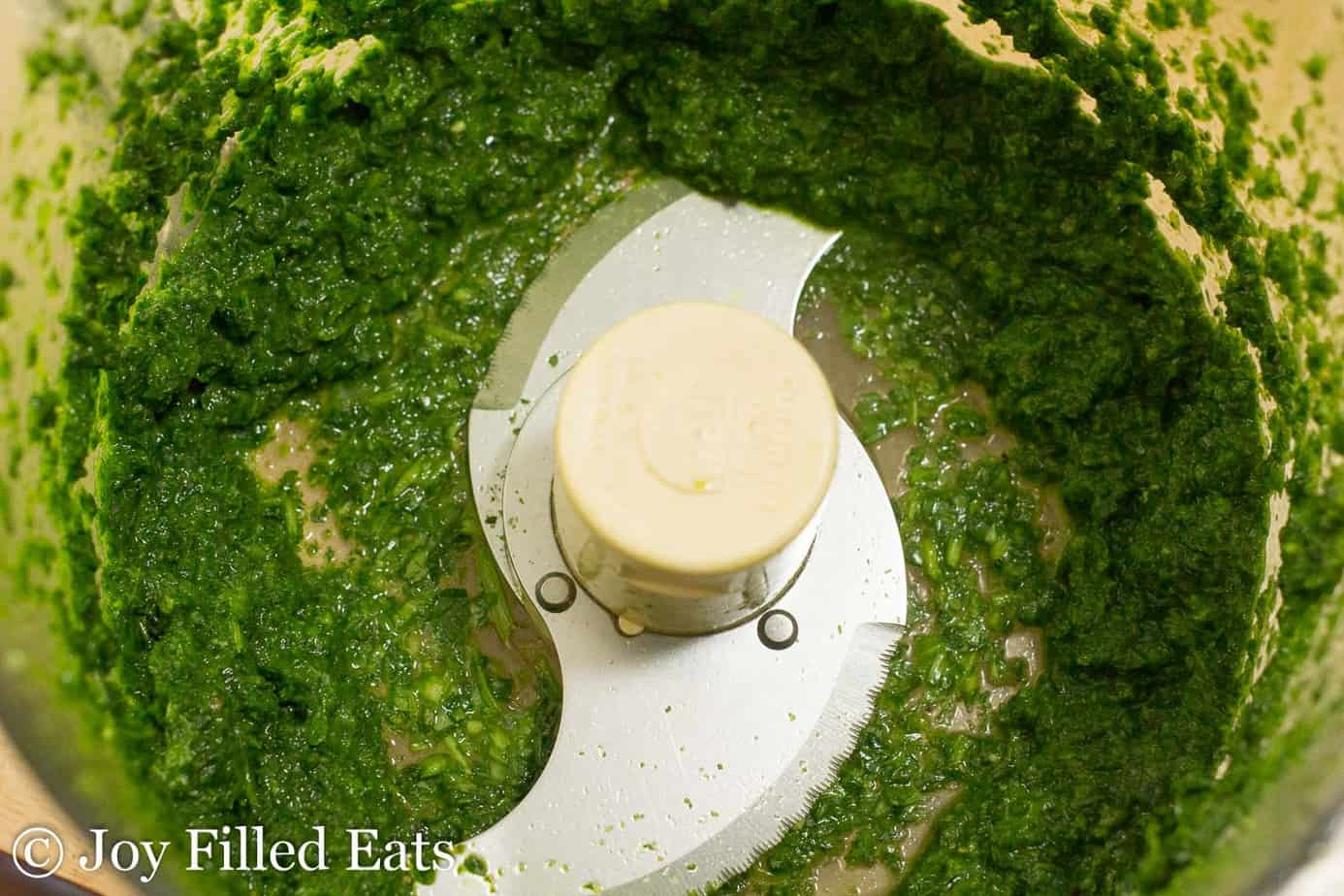 cilantro-mint chutney in a food processor