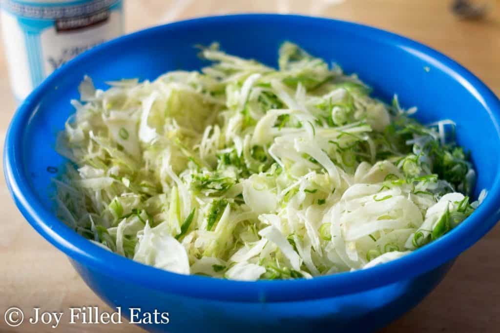 a large blue bowl wth shredded cabbage and fennel