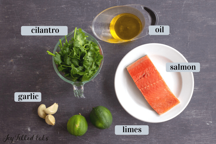 Ingredients for Keto Salmon. Include Salmon filet on round white plate, limes, garlic, cilantro and oil