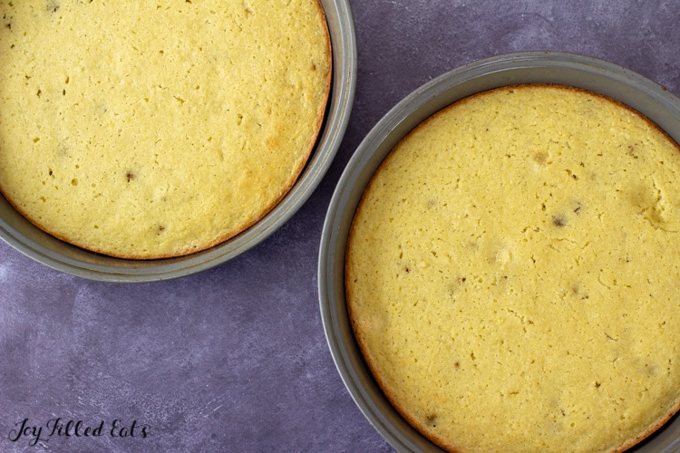 chocolate chip cake in round cake pans