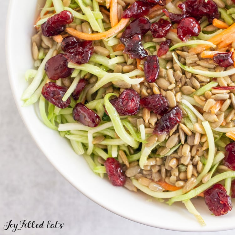 close up of keto broccoli slaw topped with cranberries and sunflower seeds