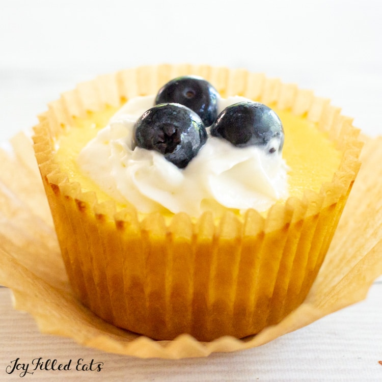 close up of a cupcake with whipped cream and blueberries