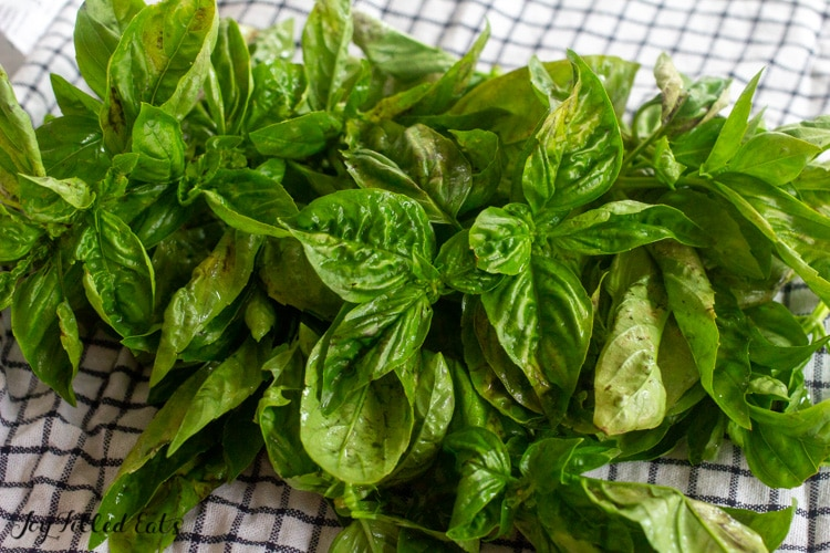 bunches of fresh basil